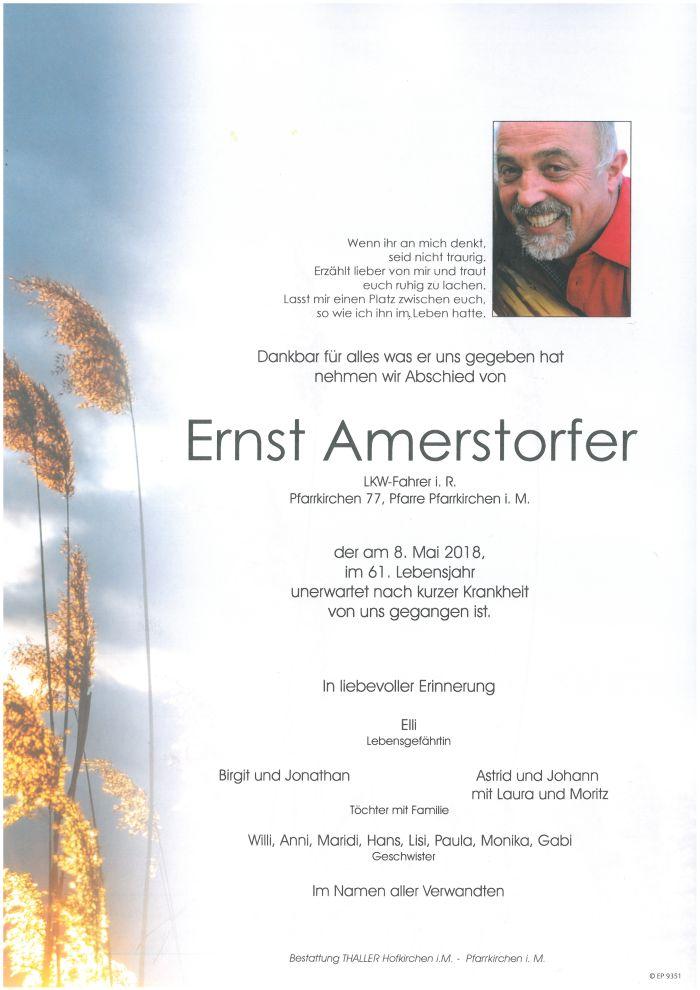 Parten Amerstorfer Ernst
