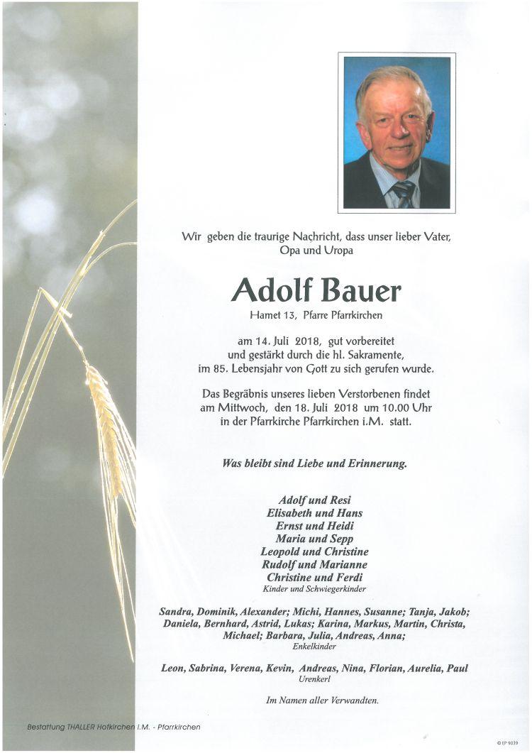 Parten Bauer Adolf