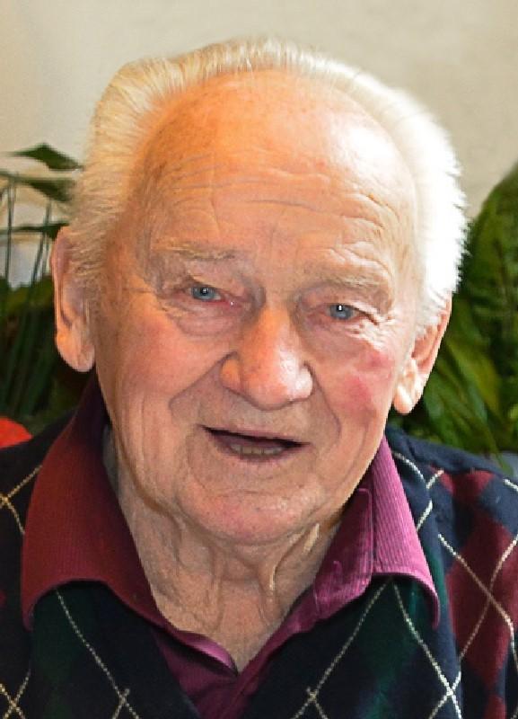 Bild Höglinger Johann